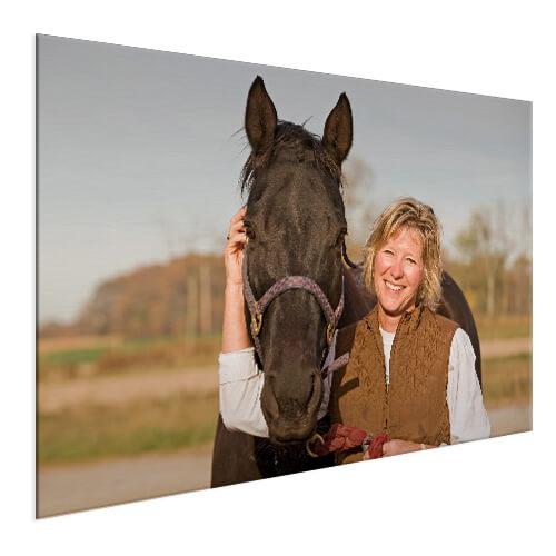 voorbeeld paard op aluminium