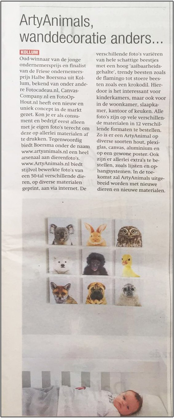 ArtyAnimals in de media