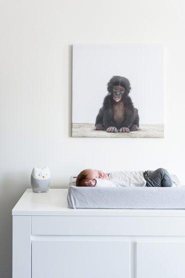 Babykamer aapje